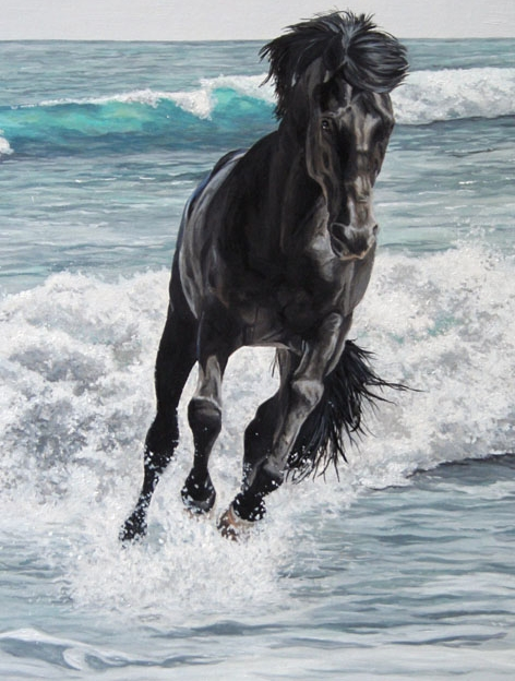 today's best horse pic, Running Wild Black Horse