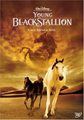 「THE YOUNG BLACK STALLION」の画像検索結果